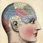 TKG KNOW: Neuroplasticity 101